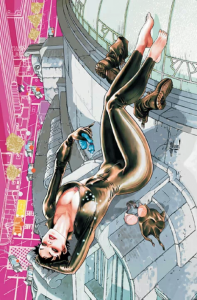 Catwoman e1307813941215 197x300 The New DCU