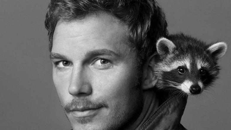 Oreo the Raccoon, the Model for Rocket in 'Guardians of the Galaxy' Has Passed Away Oreo the Raccoon, the Model for Rocket in 'Guardians of the Galaxy' Has Passed Away
