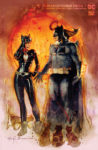 Batman Catwoman Special 1 C 98x150 Recent Comic Cover Updates For The Week Ending 2021 04 23