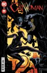 Catwoman 34 A 98x150 Recent Comic Cover Updates For The Week Ending 2021 05 21